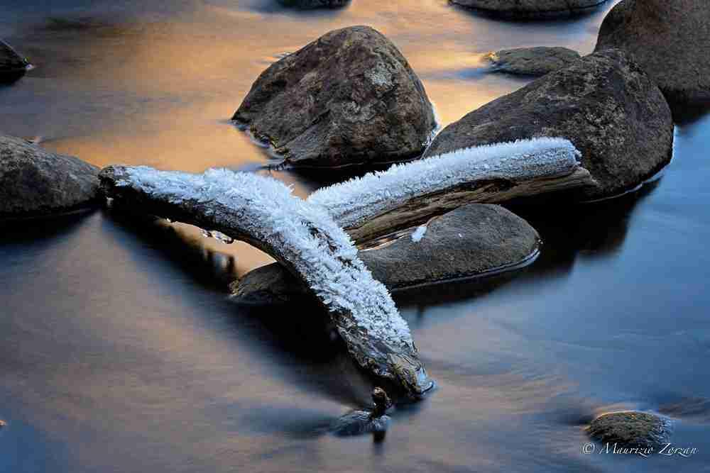 Merced River tronchetti