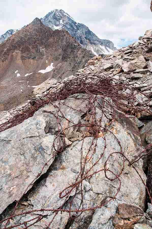 V alpini 15_049_01