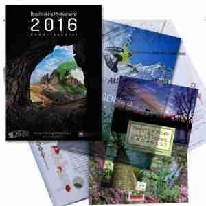 Libri e Calendari