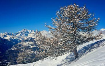 5 consigli per fotografare sulla neve