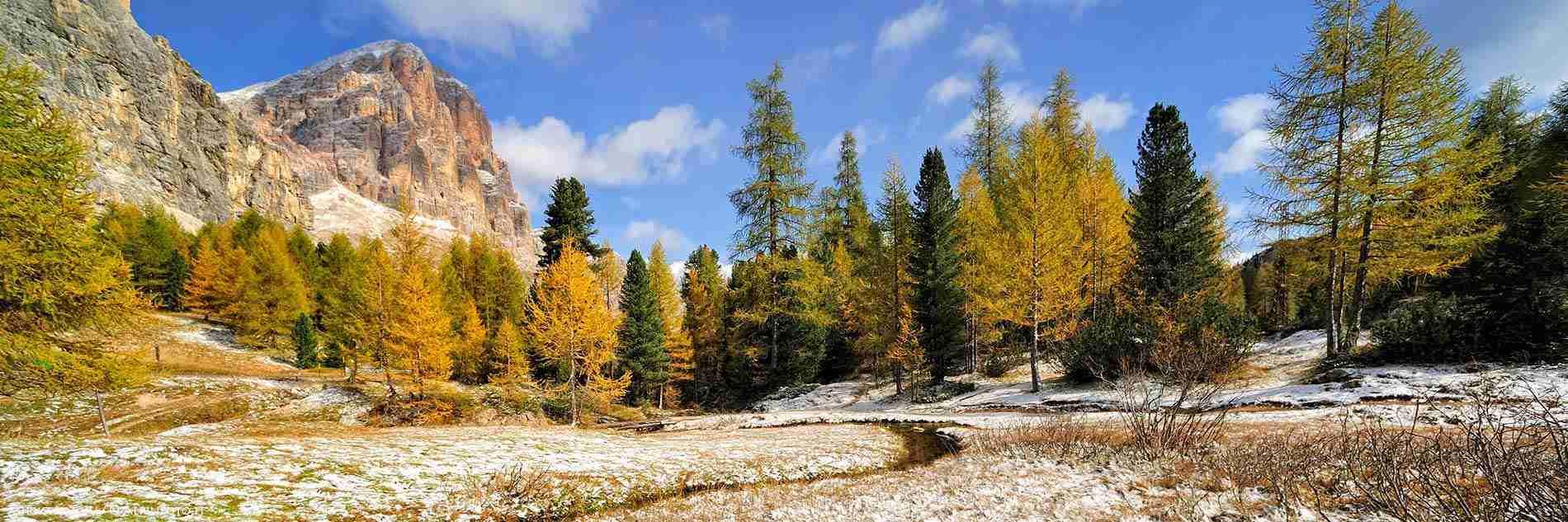 autunno_alpi_mirko_sotgiu_web