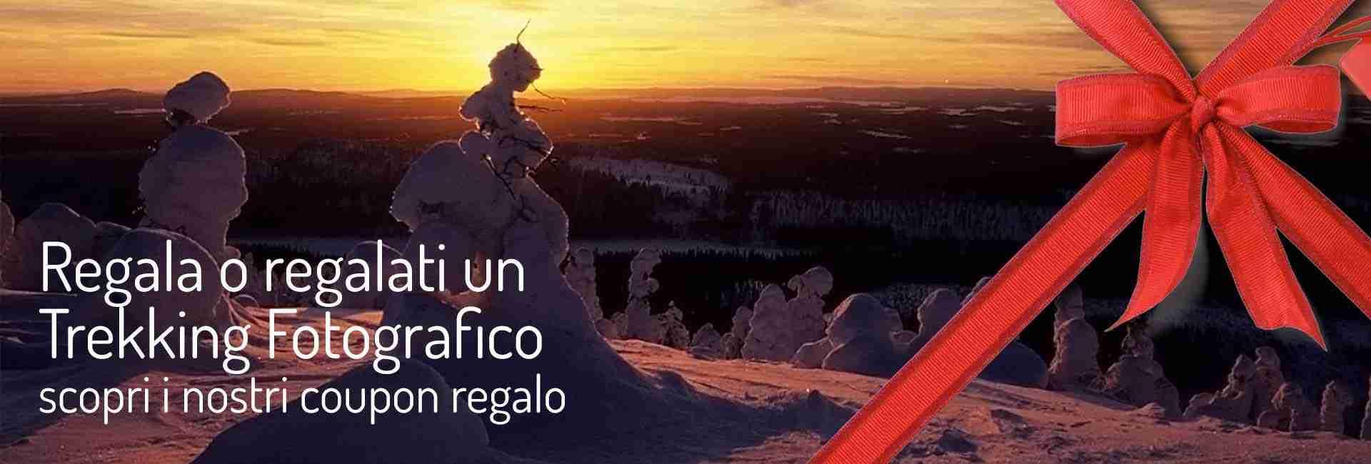regalo_web